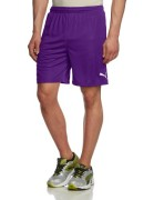 PUMA-Herren-Hose-Velize-Shorts-with-Innerslip-0-0